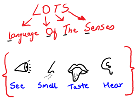 LOTS - Language of the senses